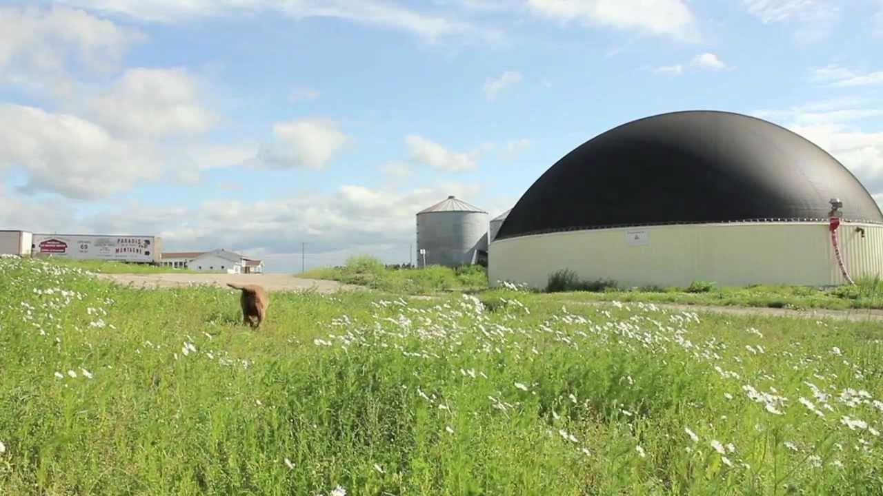 Laforge Holstein Bio-digester