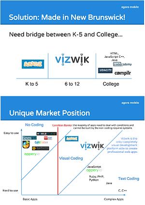 VizWik Overview